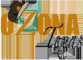 City of Ozona